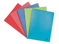 Show album Exacompta Forever opaque polypropylene 30 sleeves assorted colours