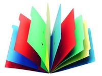Trieur carte Extendos à fenêtres 9 divisions couleur